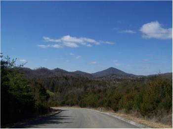 Lot 175  Wedge Way, Tazewell, TN